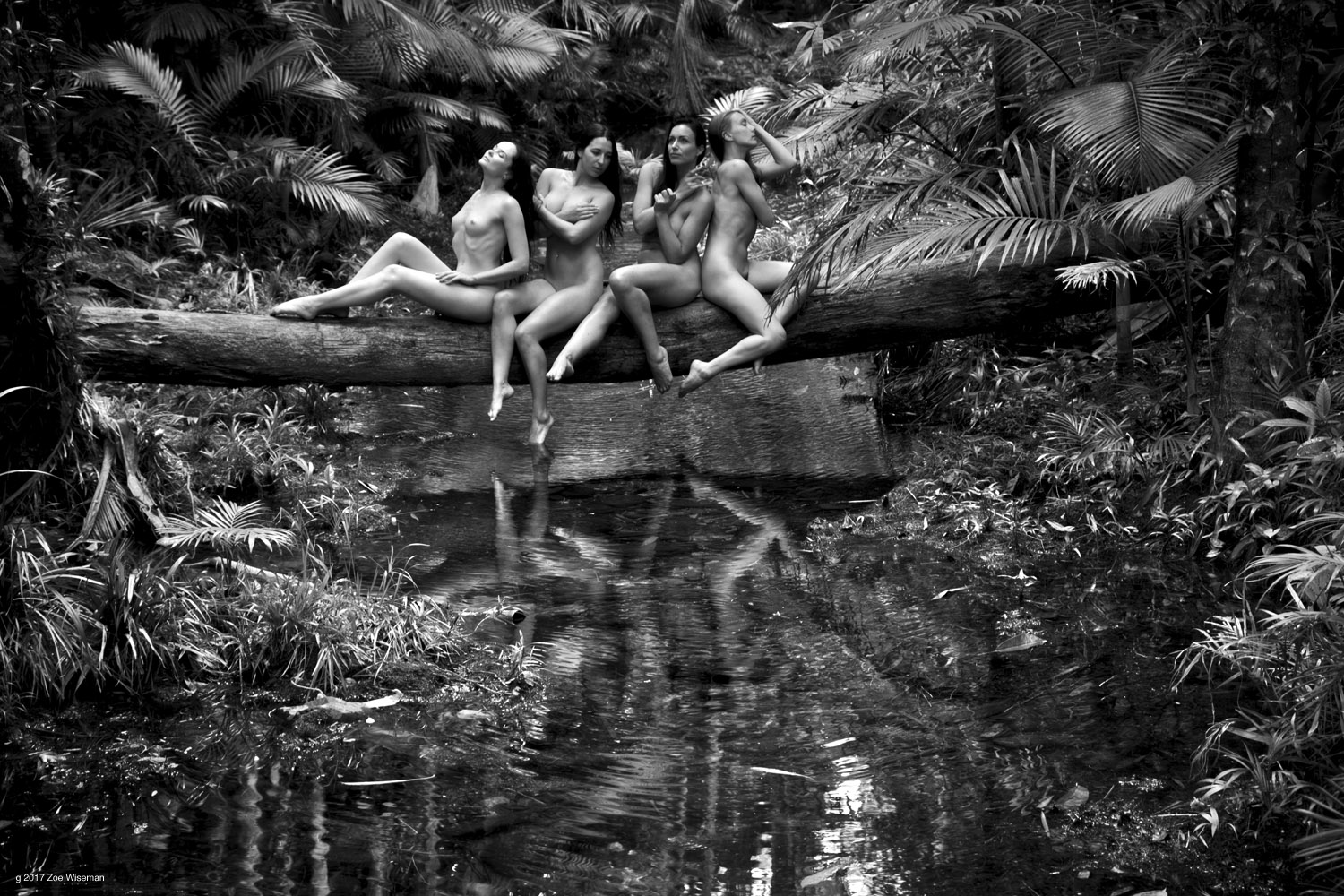 © 2017 Zoe Wiseman - models: Anne, Cheyanne, Tara and Brooke